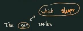 Mệnh đề quan hệ which sleeps.