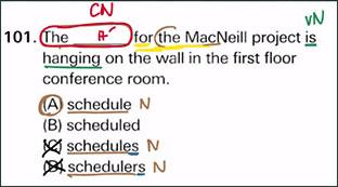 Ví dụ phân biệt danh từ số ít - số nhiều 1